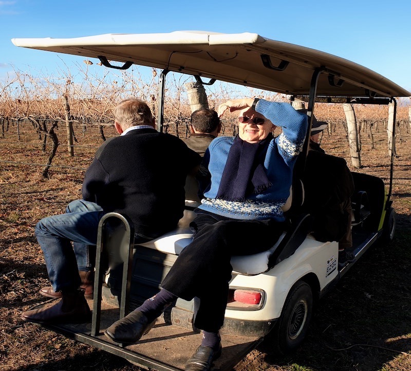 People on a golf cart driving through a vineyard in the winter.