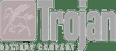 Trojan battery company logo.